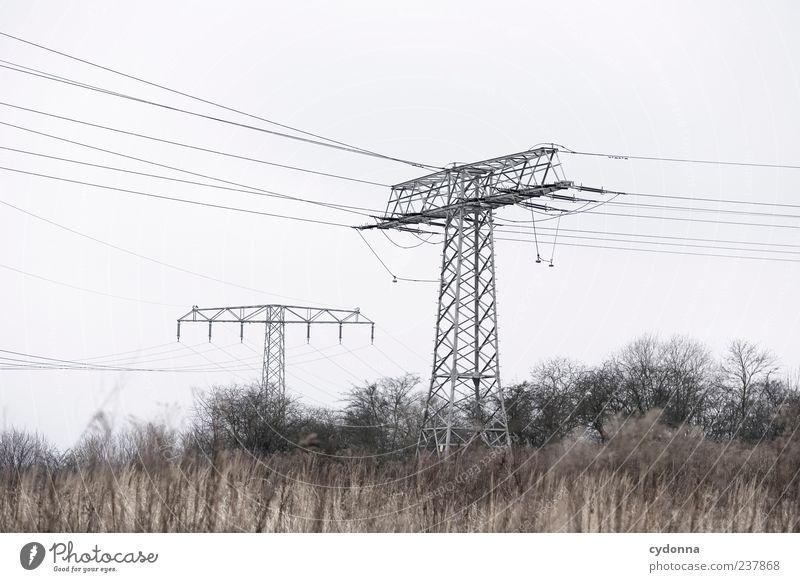 Strom Natur Baum Winter Wolken ruhig Einsamkeit Ferne Umwelt Landschaft Leben Wege & Pfade Freiheit Feld Energiewirtschaft Ausflug