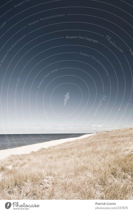Let´s go away for a while schön Ferien & Urlaub & Reisen Strand Meer Insel Umwelt Natur Landschaft Pflanze Sand Himmel Wolken Hügel Wellen Küste träumen