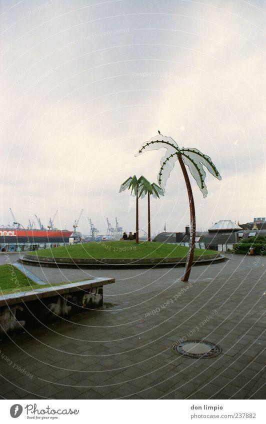 park fiction Stadt Ferien & Urlaub & Reisen ruhig Park Stimmung Kunst Beton Hamburg Zukunft Insel außergewöhnlich Idylle Hügel analog Stahl Palme