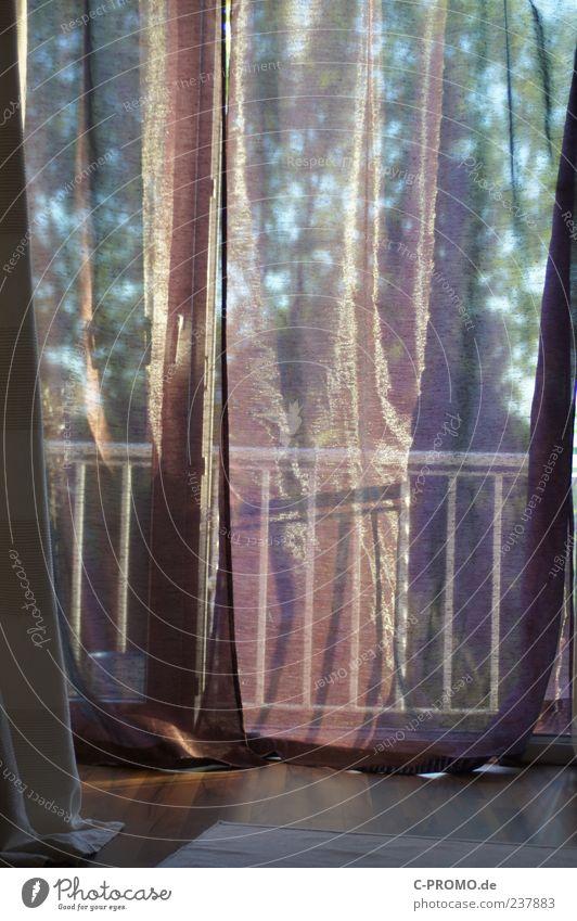 Abendbrise Teppich Laminat Vorhang Balkon Geländer ästhetisch ruhig Schlafzimmer durchsichtig Farbfoto Innenaufnahme Tag Licht Schatten Sonnenlicht Balkontür