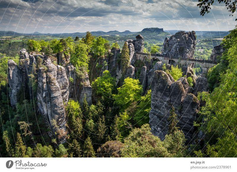 überbrücken Himmel Natur Ferien & Urlaub & Reisen Sommer grün Landschaft Ferne Wald Tourismus außergewöhnlich Deutschland Felsen Ausflug wandern Horizont