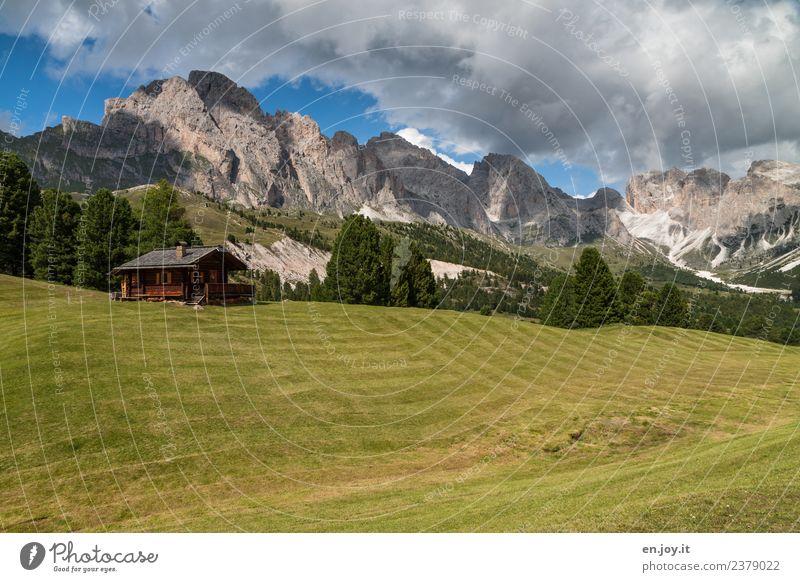 Heidi? Natur Ferien & Urlaub & Reisen Sommer grün Landschaft Erholung Wolken Berge u. Gebirge Wiese Felsen Ausflug Freizeit & Hobby wandern Idylle Abenteuer