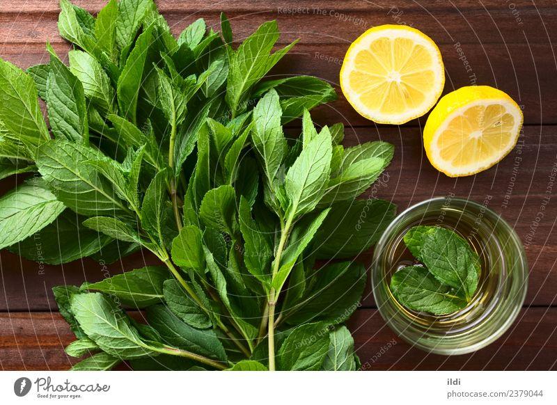 Frische Minze und Minztee Kräuter & Gewürze Getränk Tee frisch natürlich Krause Minze Bündel Abhilfe Medizin aromatisch Zweig Geschmack Gesundheit Kräuterbuch