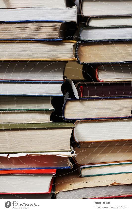 Stapel voller Weisheit II blau weiß rot Denken braun Buch hoch lernen Papier viele Bildung Wissenschaften dick Sammlung Wissen Stapel