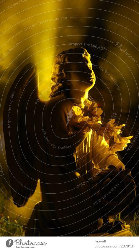 Licht Skulptur Friedhof Zeichen Engel träumen Traurigkeit gelb trösten ruhig Hoffnung Glaube demütig Trauer Tod Ende Ewigkeit Religion & Glaube Vergänglichkeit