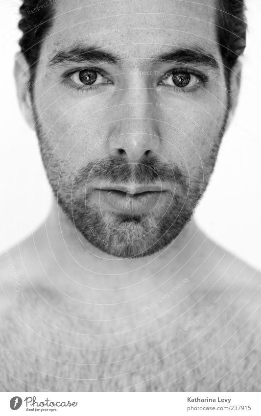 kurz vor´m Barbier-Besuch schön Haare & Frisuren Bart Barthaare ruhig Mensch maskulin Junger Mann Jugendliche Erwachsene Leben Kopf Brust 1 18-30 Jahre Blick