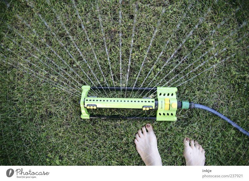 extrem schnelles Foto Wasser Leben Wiese Gras Garten Fuß Linie Freizeit & Hobby nass Barfuß Gartenarbeit spritzen gießen Dürre Nagellack Mensch