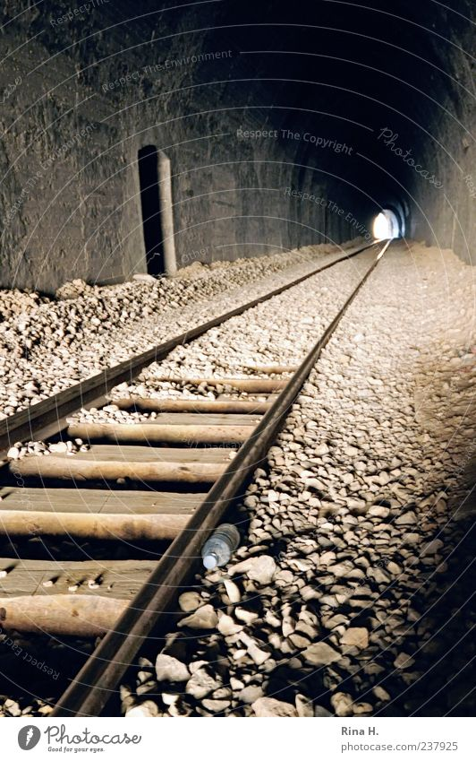 Am Ende ist Licht Ferien & Urlaub & Reisen Stein Verkehr authentisch Hoffnung Gleise Tunnel Ausweg Geröll Bahnfahren Schienenverkehr Schienennetz Tunneleinfahrt