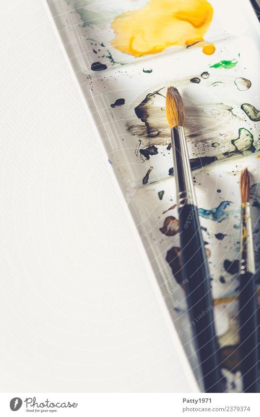 Aquarellpinsel Freizeit & Hobby malen zeichnen Kunst Künstler Maler Gemälde Pinsel Farbkasten braun gelb weiß Freude Erholung Kreativität Gedeckte Farben