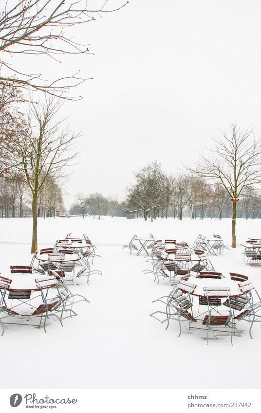 Eiszeit Restaurant Winter Schnee Baum Park kalt weiß Café Tisch Stuhl Wiese bedeckt kahl Einsamkeit leer Menschenleer Farbfoto Gedeckte Farben Außenaufnahme