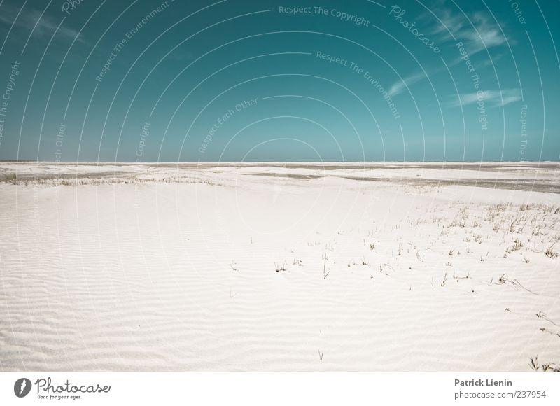 Spiekeroog | free falling Himmel Natur blau Meer Strand ruhig Einsamkeit Ferne Umwelt Landschaft Küste Freiheit Sand Stimmung Wetter Zufriedenheit