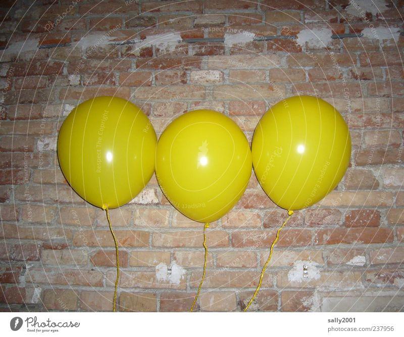 Die 3 Luftikusse gelb Wand Leben Spielen Glück Mauer Feste & Feiern Kindheit Freizeit & Hobby fliegen Fröhlichkeit Luftballon rund Karneval Backstein Backsteinwand