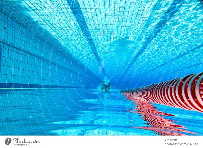 deep blue lane Mensch blau Wasser Ferien & Urlaub & Reisen Erholung kalt Sport Bewegung Stil Linie Schwimmen & Baden Freizeit & Hobby nass Schwimmbad tauchen