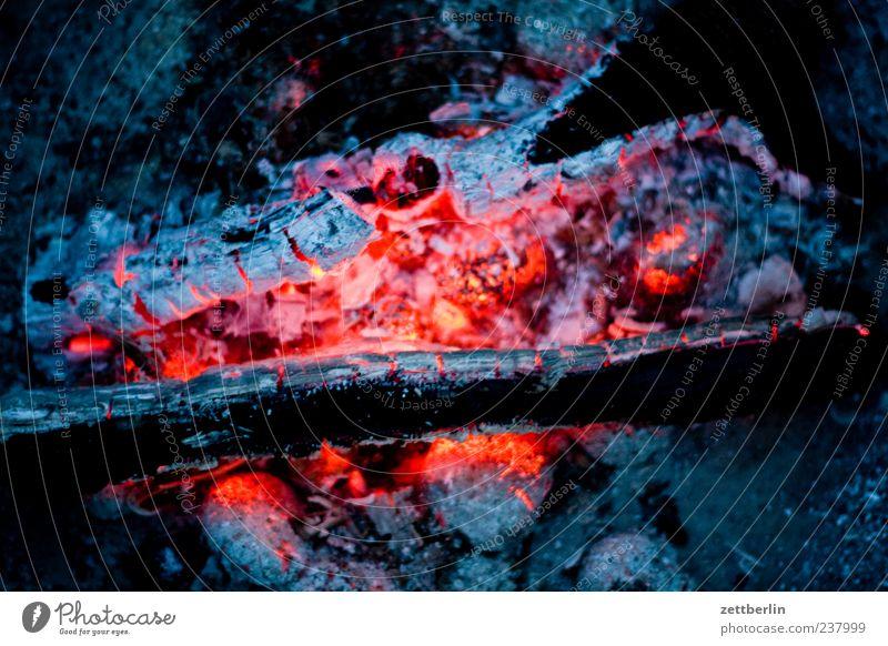 Glut Sommer Lebensfreude Kohle Grillkohle Holzkohle Feuer brennen heiß Farbfoto Gedeckte Farben Außenaufnahme Nahaufnahme Detailaufnahme Textfreiraum links