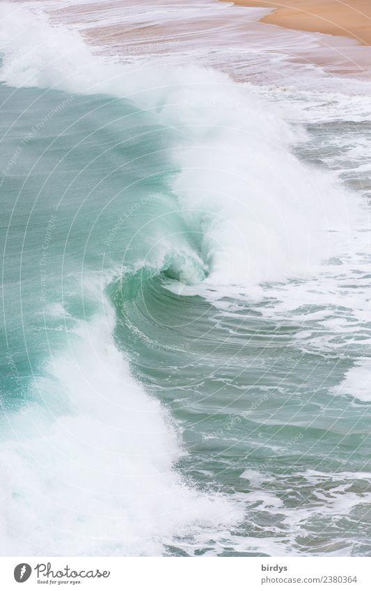 Die Welle , der Brecher Strand Meer Wellen Wasser Küste ästhetisch authentisch Flüssigkeit frisch maritim nass positiv wild türkis weiß Kraft Leben Bewegung