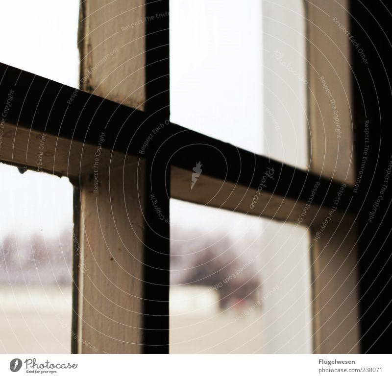 Don't forget Tod Horizont Angst gefährlich Hoffnung Vergangenheit Glaube Denkmal gruselig Sehenswürdigkeit Fensterscheibe Krieg Fensterblick früher Opfer