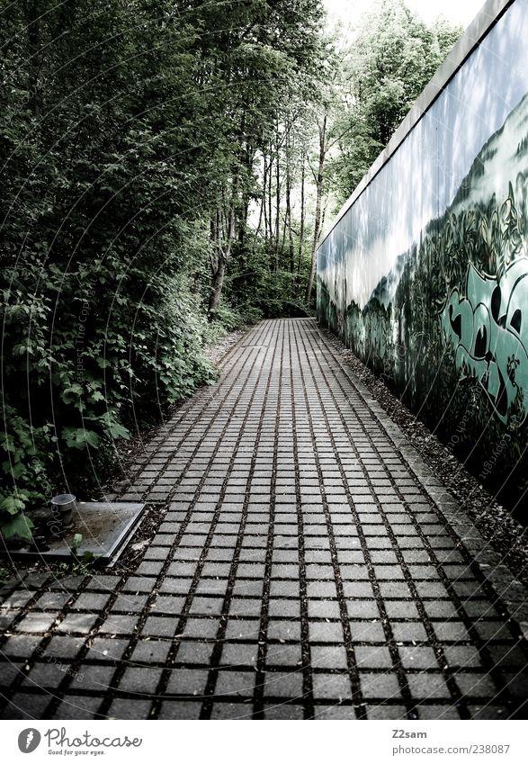 schulweg Natur grün Baum ruhig Einsamkeit Umwelt dunkel kalt Wand Graffiti Wege & Pfade dreckig Ordnung Perspektive Sträucher trist