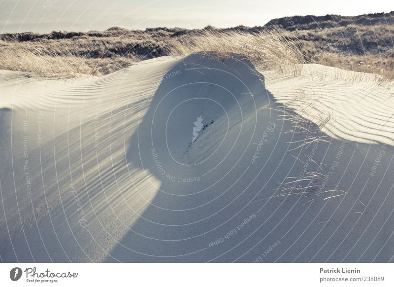 Spiekeroog | Take you away Natur Ferien & Urlaub & Reisen Meer Strand Einsamkeit Ferne Umwelt Landschaft Küste Freiheit Sand hell Erde Zufriedenheit Insel