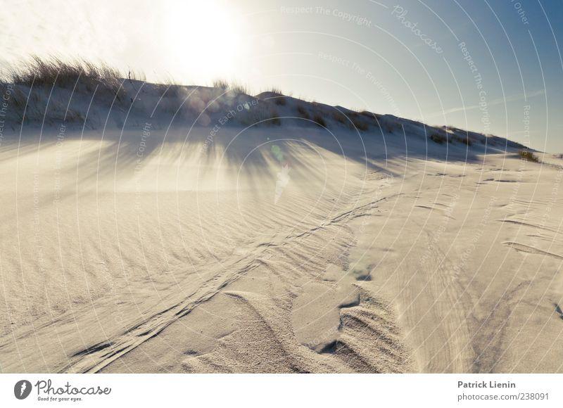 Spiekeroog   Sonnenbad Natur Ferien & Urlaub & Reisen Sonne Meer Strand Einsamkeit Ferne Umwelt Landschaft Küste Freiheit Sand hell Erde Kraft Freizeit & Hobby