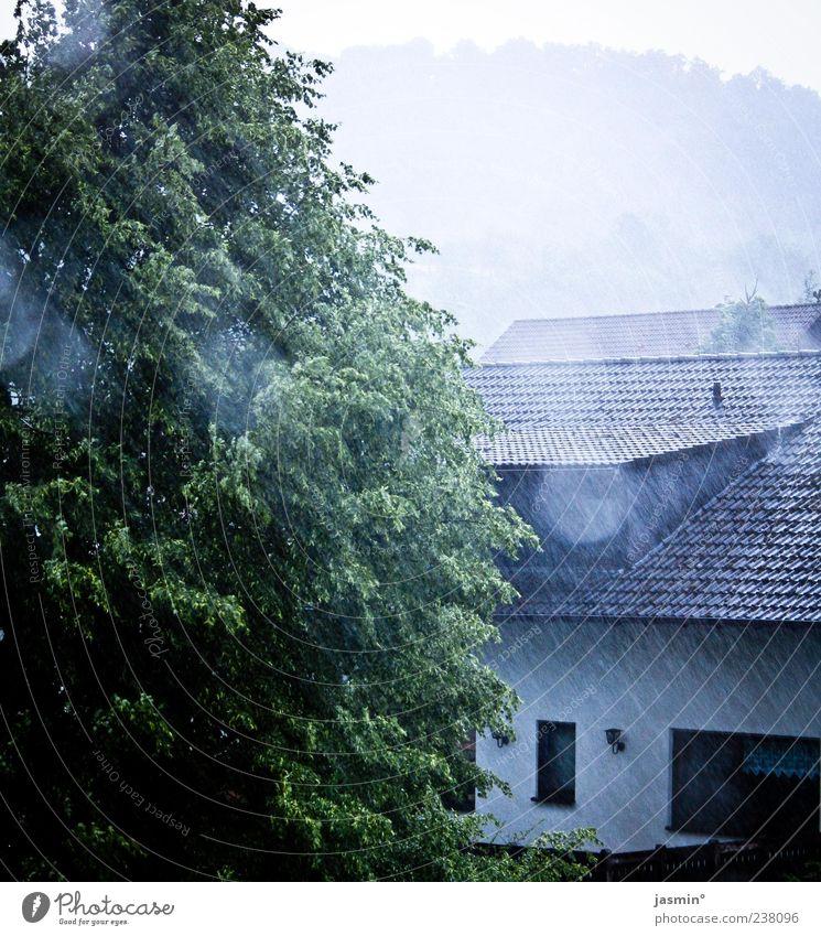 Regentage Natur Wasser Baum Haus Umwelt Landschaft kalt Gebäude Regen Wetter nass Dach Dorf Regenwasser Baumkrone Einfamilienhaus