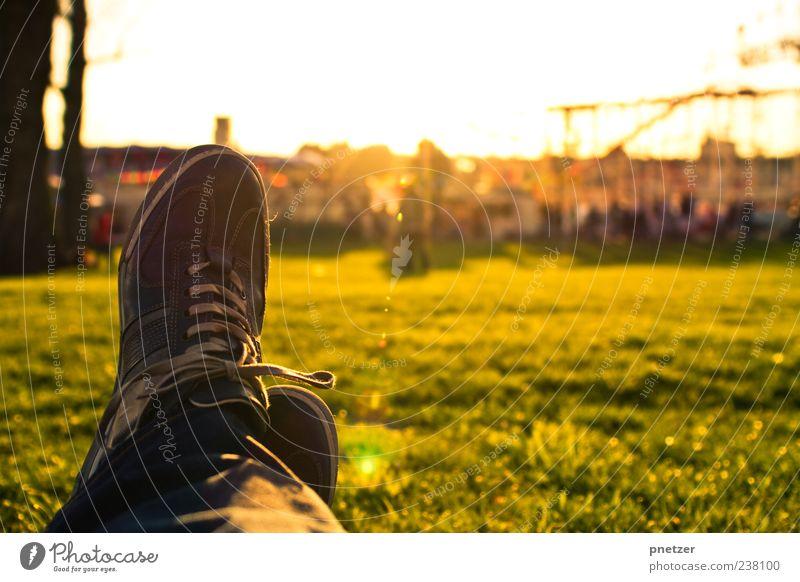 Abendsonne Mensch Mann Sonne Sommer Freude Erwachsene Erholung Wiese Wärme Gefühle Glück Beine Fuß Park Stimmung Zufriedenheit