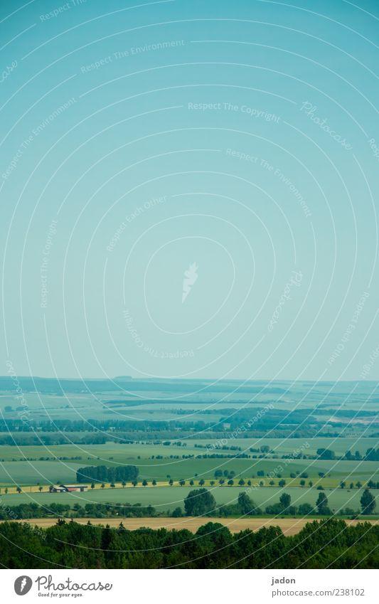 weitsicht. Ferne Landwirtschaft Forstwirtschaft Umwelt Himmel Baum Wiese Feld Baumreihe blau braun Fernweh Unendlichkeit Landschaft Kulturlandschaft Farbfoto