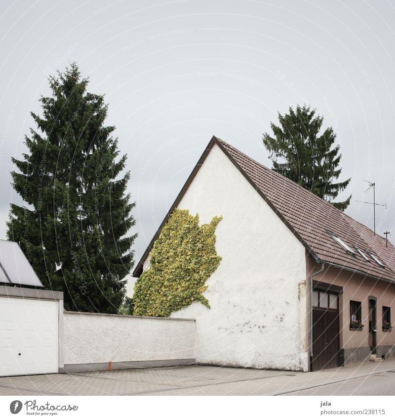 parkplatz Himmel Pflanze Baum Efeu Grünpflanze Tanne Haus Platz Bauwerk Gebäude Architektur Mauer Wand Fassade Tür Dach Straße Bürgersteig Parkplatz trist