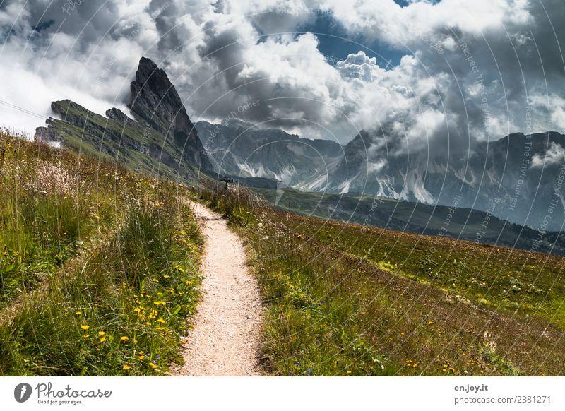 dieser Weg Himmel Natur Ferien & Urlaub & Reisen Sommer Landschaft Wolken Ferne Berge u. Gebirge Wege & Pfade Wiese Tourismus Freiheit Felsen Ausflug wandern