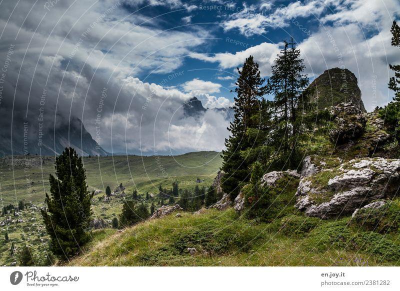 Wanderparadies Ferien & Urlaub & Reisen Ausflug Abenteuer Ferne Freiheit Sommer Sommerurlaub Berge u. Gebirge wandern Natur Landschaft Pflanze Himmel Wolken