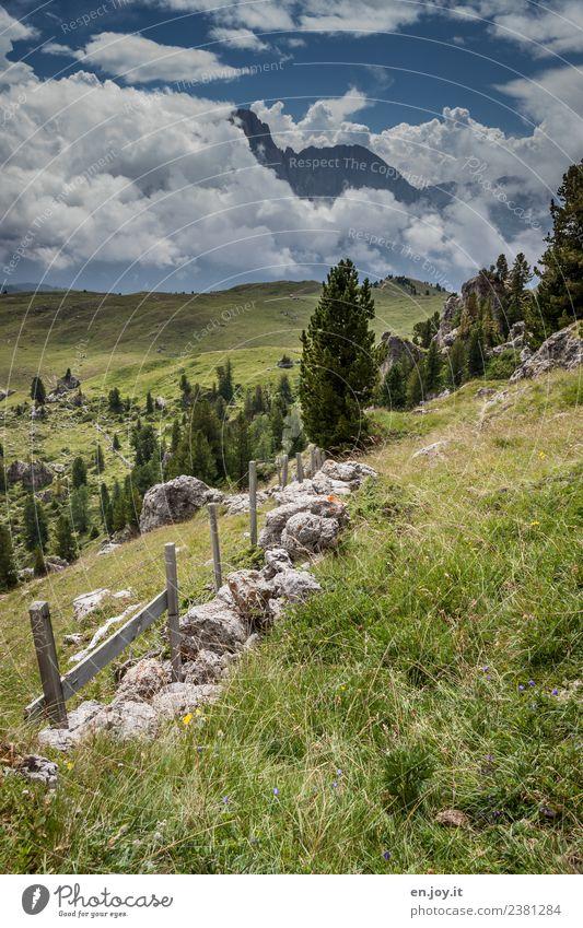 Landschaft Himmel Natur Ferien & Urlaub & Reisen Pflanze Sommer Baum Wolken Berge u. Gebirge Wege & Pfade Wiese Felsen Ausflug wandern Idylle Abenteuer