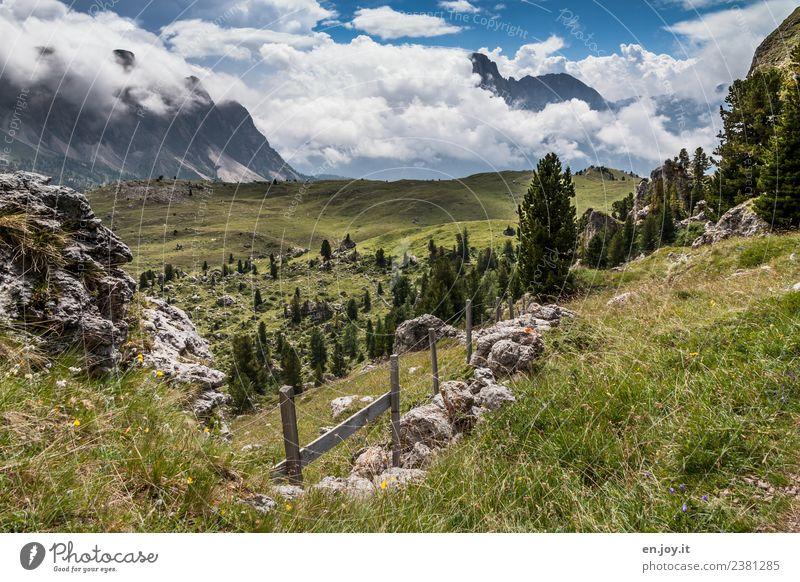 Idylle Himmel Natur Ferien & Urlaub & Reisen Pflanze Sommer Landschaft Ferne Berge u. Gebirge Wiese Freiheit Felsen Ausflug wandern Abenteuer Italien