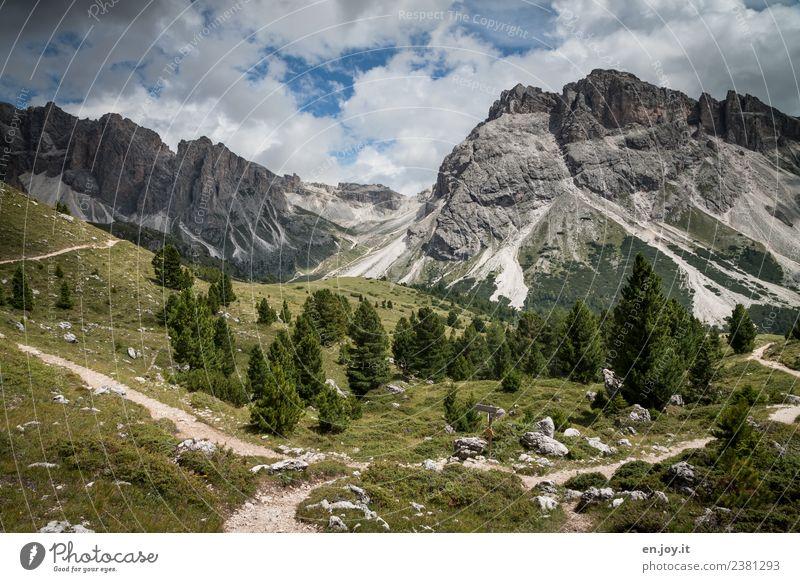 Entscheidung Natur Ferien & Urlaub & Reisen Sommer Landschaft Erholung ruhig Ferne Berge u. Gebirge Wege & Pfade Wiese Tourismus Ausflug Freizeit & Hobby
