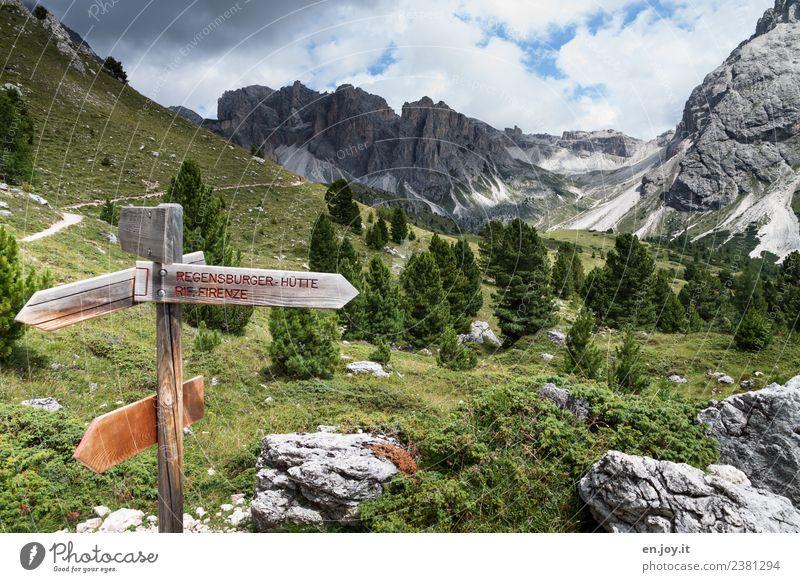 wegweisend Natur Ferien & Urlaub & Reisen Sommer Landschaft Ferne Berge u. Gebirge Leben Wege & Pfade Wiese Tourismus Freiheit Felsen Ausflug Freizeit & Hobby