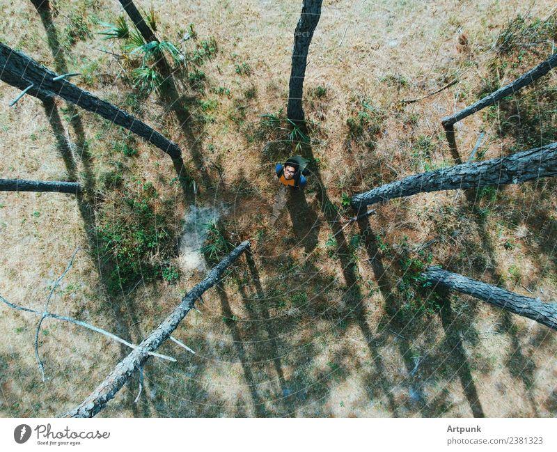 Eine Luftaufnahme eines Wanderers im Wald, der nach oben schaut. wandern Camping Baum Rucksack Wege & Pfade Abenteuer Sommer Gras Natur Außenaufnahme Fluggerät