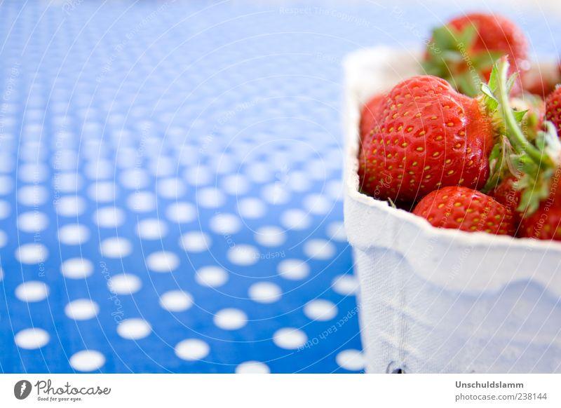 Erdbeerkörbchen blau weiß rot Farbe Ernährung Gesundheit Frucht frisch Punkt Bioprodukte Erdbeeren gepunktet Textfreiraum links Obstschale