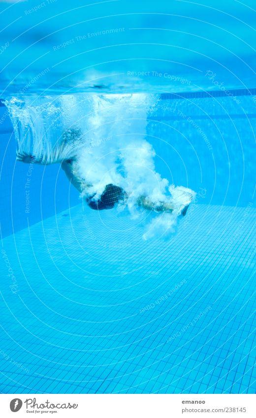 Luft holen Freizeit & Hobby Sommer Wassersport Schwimmen & Baden tauchen Schwimmbad Mensch maskulin Mann Erwachsene 1 Bewegung springen kalt nass blau