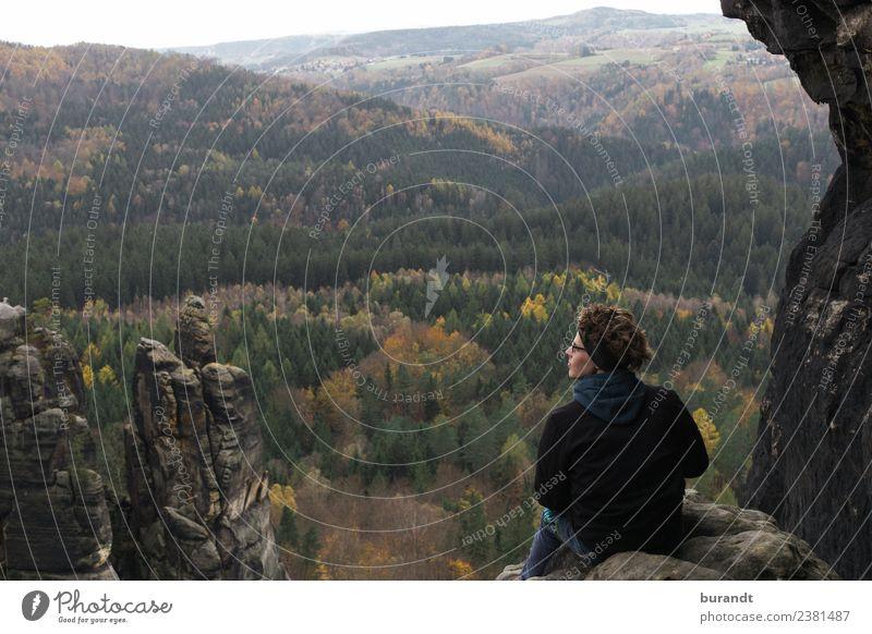 Herbstausblick sächsische Schweiz wandern maskulin Junger Mann Jugendliche Oberkörper Gesicht 1 Mensch 18-30 Jahre Erwachsene Umwelt Natur Landschaft Pflanze