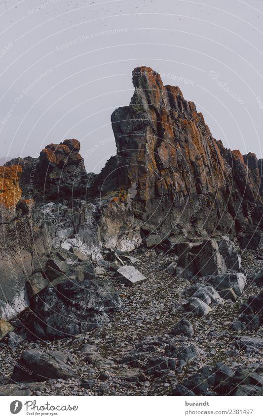 antarctic landscape II Umwelt Natur Landschaft Pflanze Klima Dürre Hügel Felsen Antarktis Antarktische Halbinsel Halfmoon Island eckig kalt trist grau orange