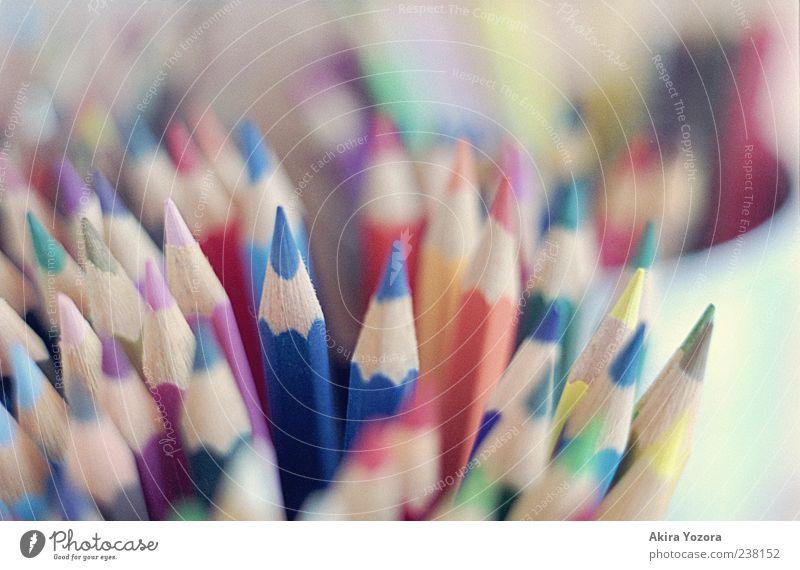 Zeichnungseinfärbegerät Farbstift Holz nah blau mehrfarbig gelb grün violett rosa rot Farbe Inspiration Kreativität Kunst Farbfoto Innenaufnahme Nahaufnahme
