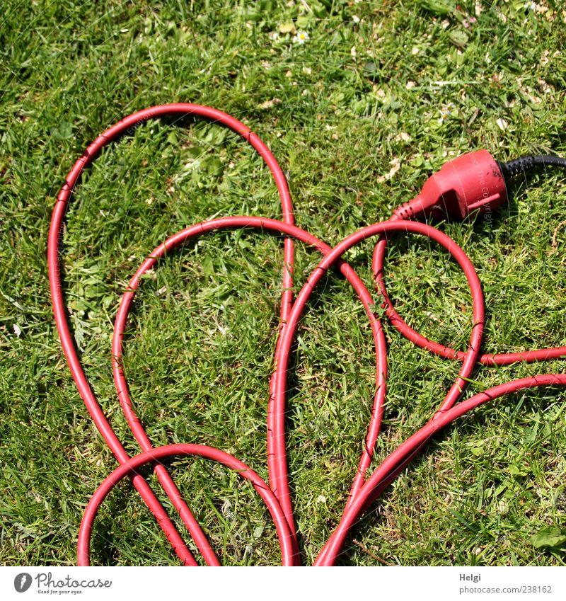geordnetes Wirrwarr... grün rot Gras Linie Herz außergewöhnlich liegen Elektrizität Perspektive Kabel einzigartig Technik & Technologie lang durcheinander Stecker Elektrisches Gerät