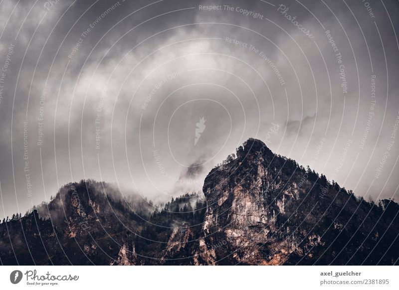 Dark Mountain Natur Landschaft Wald Berge u. Gebirge dunkel Umwelt Felsen Nebel Wetter bedrohlich Unwetter schlechtes Wetter Gewitterwolken