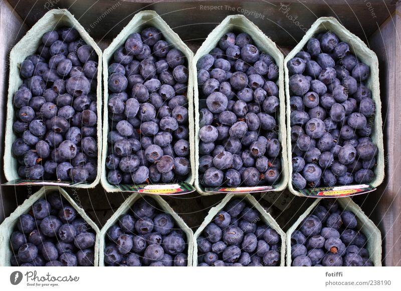 Das ist Amsterdam (Oder: Beerenbötchen) blau frisch Ernährung süß rund lecker Reihe Beeren Schalen & Schüsseln Geschmackssinn Karton Niederlande Blaubeeren Papier vitaminreich Frucht