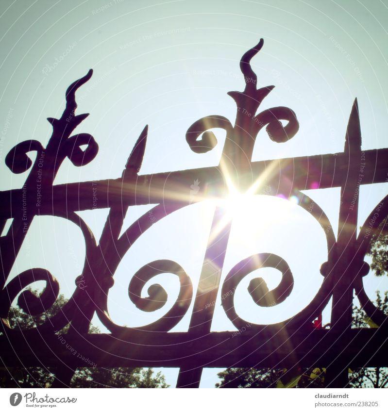Überwiegend sonnig... Wolkenloser Himmel Sonne Sommer Schönes Wetter Baum Garten leuchten heiß hell Wärme Zaun Schmiedekunst Metall Metallzaun Blendeneffekt