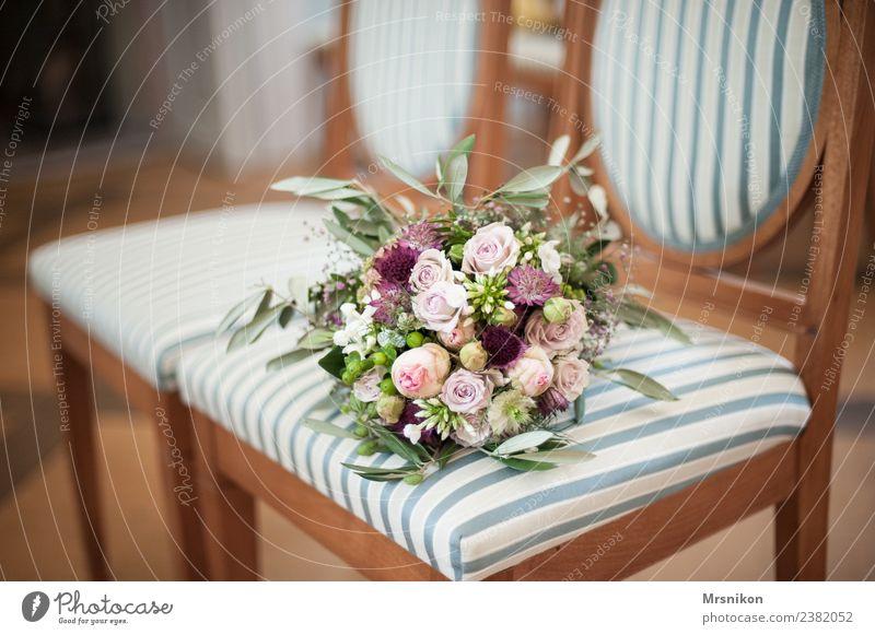 Standesamt Liebe Glück Feste & Feiern Zukunft Hochzeit Streifen Stuhl Rose zart Glückwünsche Ehe Rathaus Heiratsantrag Liebesbekundung zartes Grün Olivenblatt