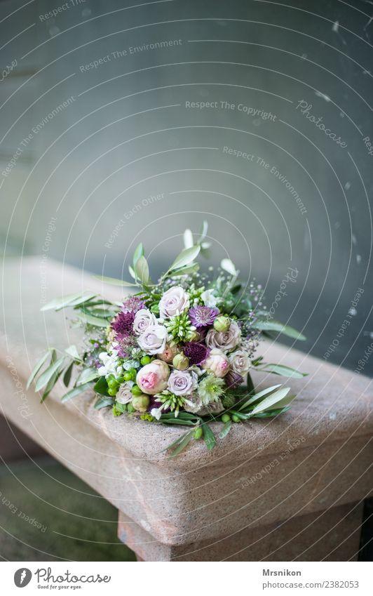 Strauß schön Leben Liebe Glück Feste & Feiern ästhetisch Fröhlichkeit Lebensfreude Zukunft Hochzeit Rose zart Ehepaar Glückwünsche Sims