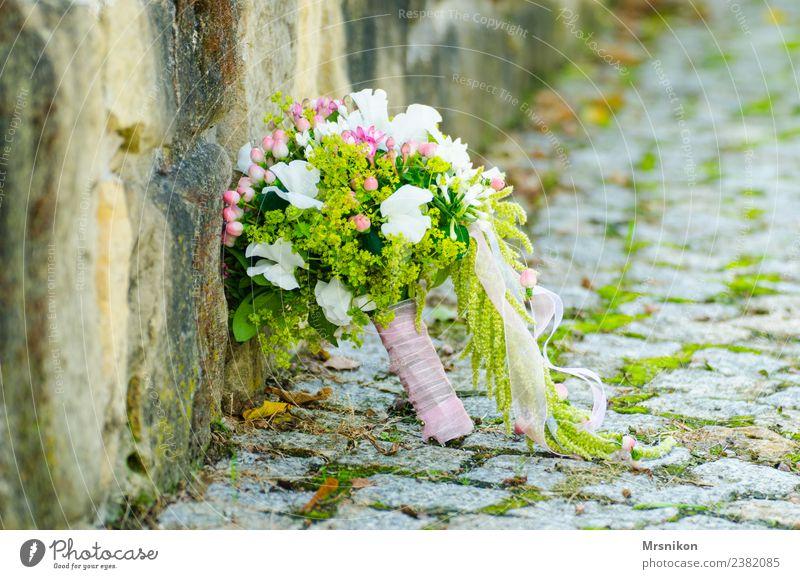 Hochzeit grün Blume Liebe Glück Mauer rosa frisch ästhetisch Unendlichkeit Blumenstrauß Verliebtheit Schleier Hochzeitspaar gebunden