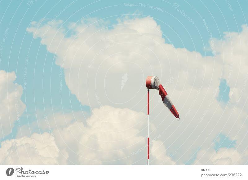 Kalle's Windhose Himmel weiß rot Wolken Umwelt Luft Wetter Klima Urelemente Schönes Wetter gestreift wehen Windstille hell-blau Warnfarbe