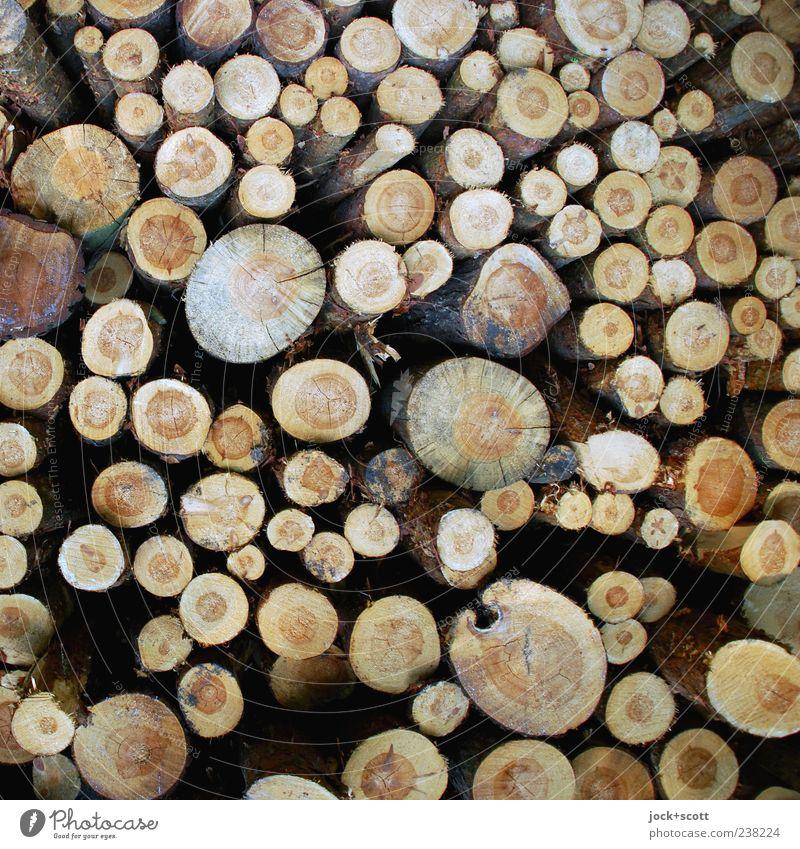 Rohholz unterschiedlich ausgehalten Natur Baum natürlich Holz braun liegen Ordnung einfach rund Niveau viele Baumstamm rein Teile u. Stücke Sammlung Stapel