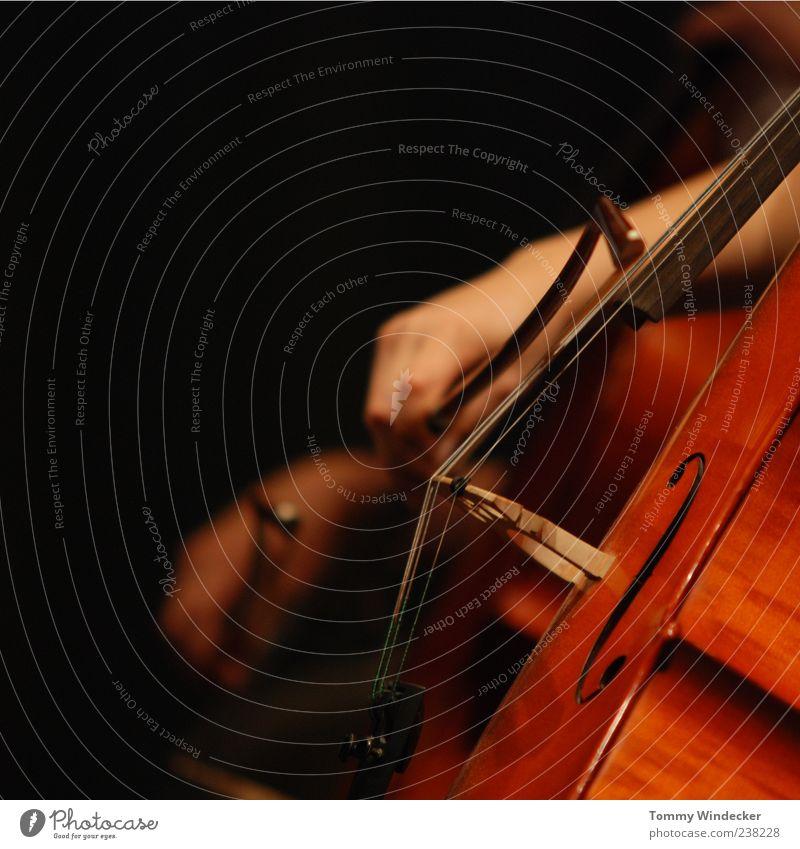 Symphonie Musikunterricht Hand Kunst Künstler Klassik Konzert Musiker Orchester Cello Cellobogen musizieren streichen Leidenschaft Kreativität Musikinstrument