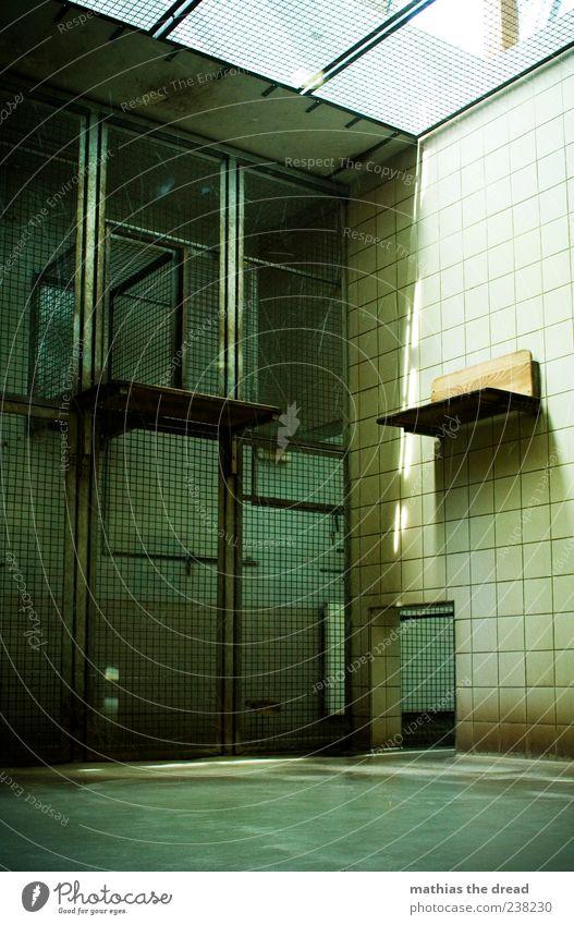 KÄFIG Bauwerk Gebäude Architektur Mauer Wand Zoo alt dunkel eckig Gefühle Käfig Gitter gefangen leer Fliesen u. Kacheln Farbfoto Innenaufnahme Menschenleer Tag